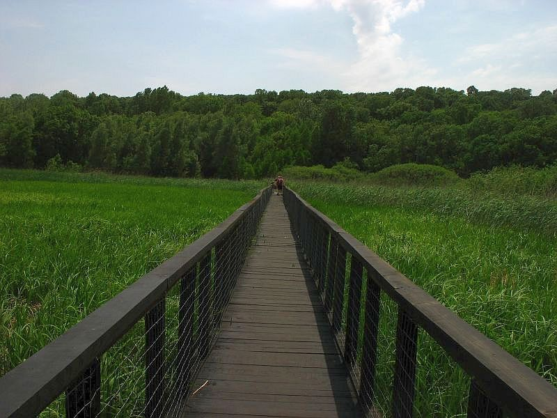 parc natural comana (2)