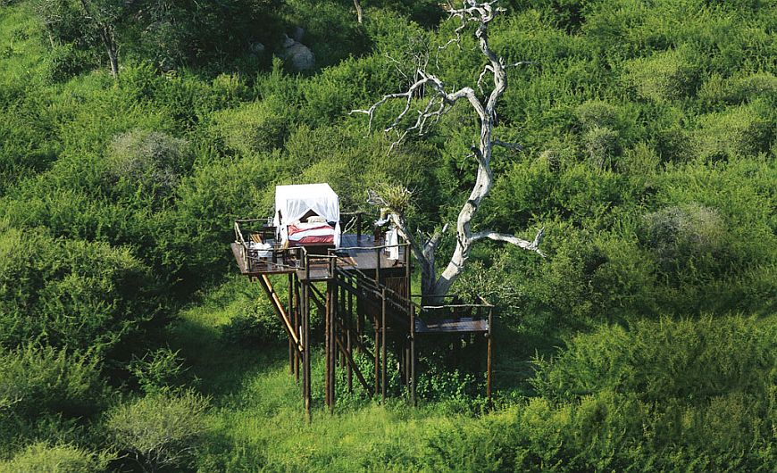 Lion Sands Treehouses (3)